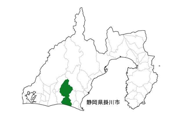 静岡 掛川産 深蒸し茶