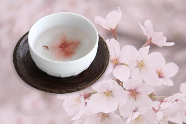 桜茶 お祝いの席に 33g 不二食品